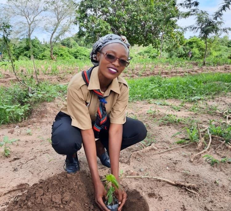 Female malawian scout planting a seedling