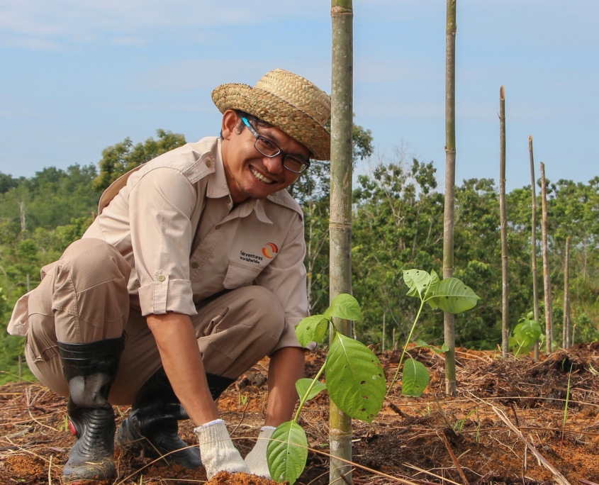 Employee of Fairventures planting trees