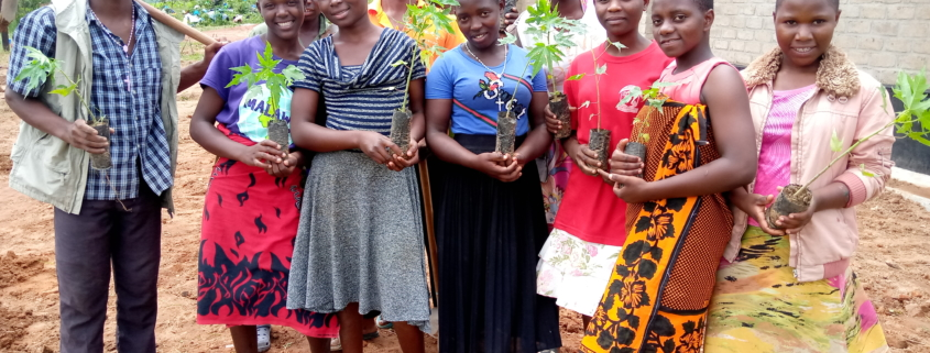 Group of Students of St Ignatius during planting action